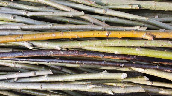 Drie kleuren wilgenhout