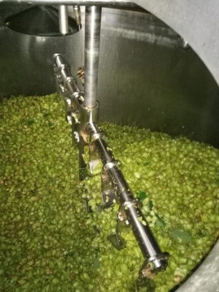 Altena hop in de ketel bij brouwerij Ramses